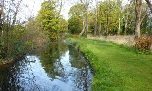 Tollerton Brook